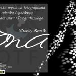 plakat- 2013-linhartow