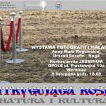 plakat-2013-rogowska