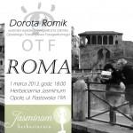 plakat -2013-romik